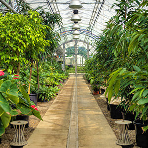 Keeping A Home Garden Is A Preferred Pastime Greenhouses Etc San Antonio TX